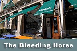The Bleeding Horse, Dublin